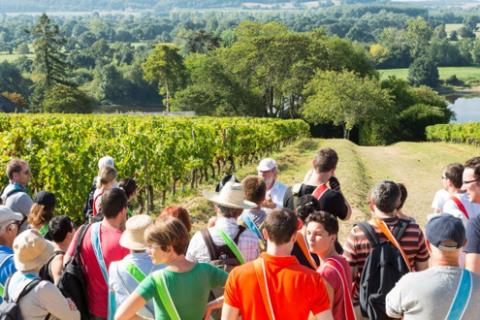 Quelles sorties CE/CSE organiser en Alsace ?